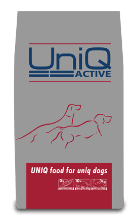 UniQ Active - glutenfrit foder til den voksne hund, som skal forkæles lidt ekstra